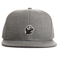 The LRG Hat Panda Snapback in Ash Heather