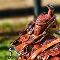"Western Saddle in Waiting 8"" x 12"" Print, horses, tack, equine, horse,bridle,saddle"