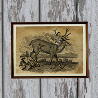 Deer art print Old paper Antiqued decoration vintage looking