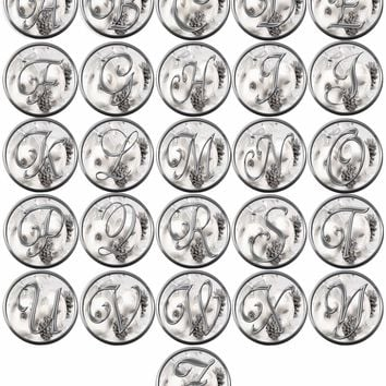 Christmas Silver Ornament & Frosted Pine Cones Monogram Alphabet Letters A - Z For Winter Holidays 18MM - 20MM Snap Charm Jewelry
