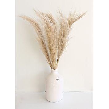 Dried Natural Pampas Grass - 25 Stems - Ships Alone