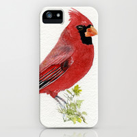 Northern Cardinal iPhone & iPod Case by Brett Winn
