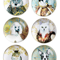 Reigning Cats and Dogs Magnet Set
