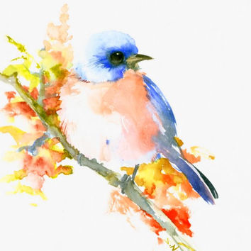 Eastern Bluebird 10 X 8 original one of a kind watercolor painting