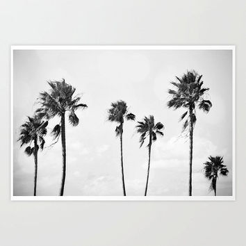 Black Palms - Landscape Photograph Print, Light Gray Wall Hanging, Palm Trees Beach Surf Coastal Art Photography. In 8x10 11x14 16x20 20x30