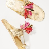 Figue x Anthropologie Scaramouche Slide Sandals