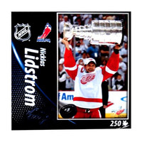 Top Dog NHL Detroit Red Wings Niklas Lindstrom 250-Piece Puzzle