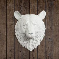 The Large Kodiak Faux Taxidermy Resin Bear Wall Mount | Faux Bear Head in Multiple Colors