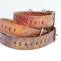 Personalized Leather Dog Collar -Rugged Style