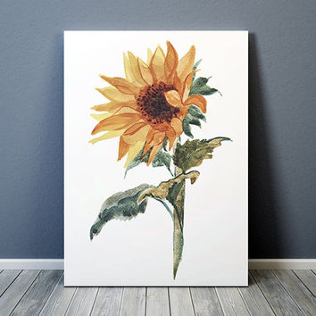 Sunflower art Watercolor print Botanical print Flower poster ACW634