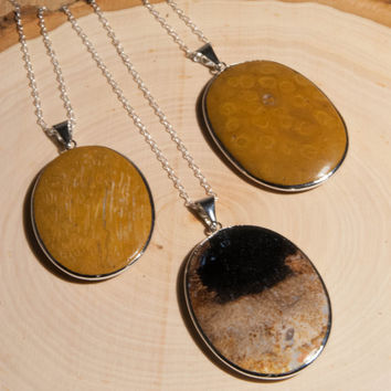 Natural Wood Necklace - Wood Pendant - Petrified Wood - Boho Necklace - Statement Necklace - Layering Necklace - Silver Necklace