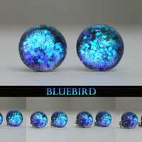 Bluebird Color Shifting Stud Earrings