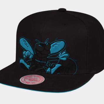 Charlotte Hornets Mitchell & Ness NBA Cropped XL Logo Snapback Cap