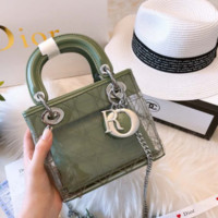 Dior Green shoulder bag transparent handbag