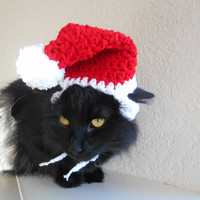 Cat Santa Hat - Cat Christmas Costume - Pet Christmas Costume - Cat Photo Prop - Kitten Santa Hat - Photo Prop for Family Christmas Pictures