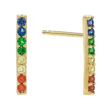 Rainbow Long Bar Stud Earring