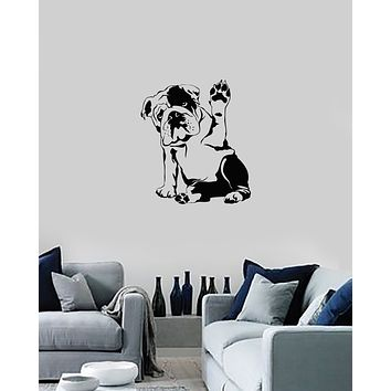 Vinyl Wall Decal English Bulldog Dog Pet Veterinary Grooming Salon Stickers Mural (ig5938)