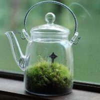 irish landscape in glass teapot by weegreenspot on Etsy