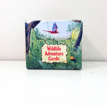 Wildlife Adventure Cards by Grolier, Card Collection {1992} Vintage Educational Toy
