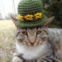 Soldier Cat Hat Costume Small Dog -  Memorial Day Pets Cats Small Dogs - Army Soldier Military - The General's Cat Soldier Hat