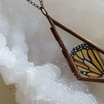 Handmade, Stained Glass, Crystal Drop Copper Locket Filled with Real Florida Found Monarch Butterfly Wings