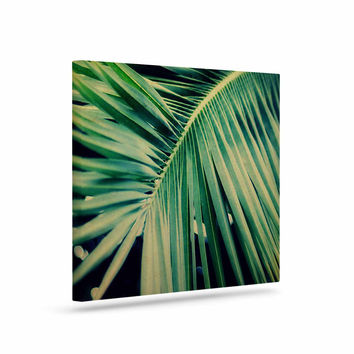 """Angie Turner """"Palm Frond"""" Green Nature Canvas Art"""