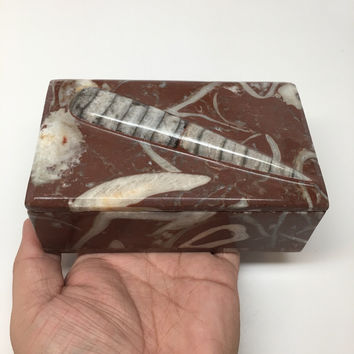 "640g, 5""x3""x2.2"" Rectangular Fossils Ammonite Red Jewelry Box @Morocco, MF638"