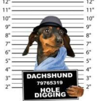 dachshund hole digging t-shirt mens t-shirts dogs mugshot t-shirts mug short dog pets tshirt pet lovers