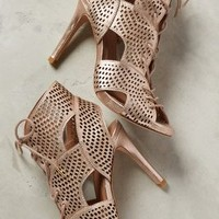 Joie Elvie Shooties Gold