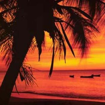Tropical Beach Boats at Sunset Poster 24x36