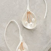 Calla Pearl Drops by Anthropologie Silver All Earrings