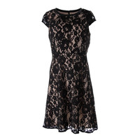 Dylan Gray Womens Silk Lace Cocktail Dress