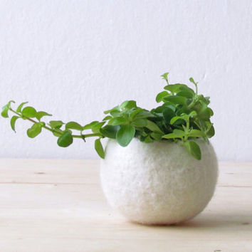 Felt succulent planter / felted bowl / Mini flower vase vase / White vase / New years eve decor