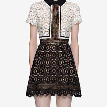 Contrast Collar Lace Embroidered Mini Dress
