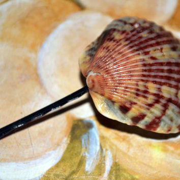 Scallop Shell Bobby Pin Beach Theme Hair For Summer