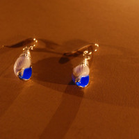 Glow in the dark blue sea shell hook earrings