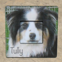 """Personalized Dog Memorial Picture Frame -  The Original & Unique """"Picture in Picture"""" Custom Pet Photo Frame 8"""" x 8"""""""