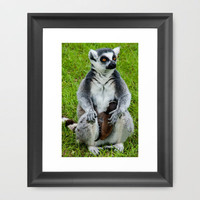 LEMUR WITH BABY Framed Art Print by catspaws