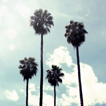 Los Angeles Palm trees Sunshine Summer retro Decor California Living Fine Art Print Photography