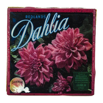 Dahlia - Vintage Citrus Crate Label - Handmade Recycled Tile Coaster