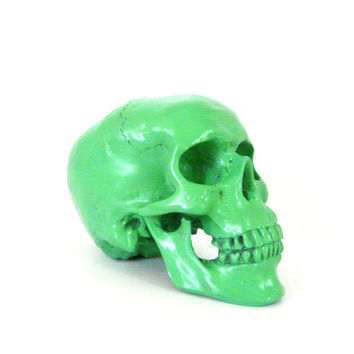 mint green, skull sculpture, skulls, skull head, human head, weird, home decor, artsy