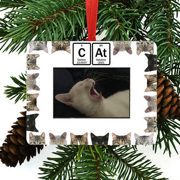 Cat Periodic Table of Element Christmas Tree Ornament / Picture Frame