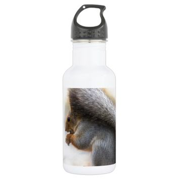 Squirrel on a bench and some nuts stainless steel water bottle