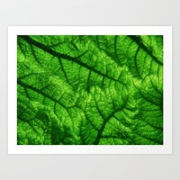 Green Leaf Art Print by CatyArte