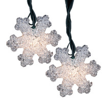 Kurt Adler 10-light 2.5-inch Eva Snowflake Light Set
