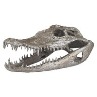 Lazy Susan Crocodile Skull Decorative Figurine - Silver