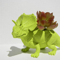 Triceratop Dinosaur Planter Green for Succulent Plant Great Dorm, Office Decor