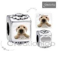 Personalized charm for any Pandora bracelet Memory charm Pet's name dog