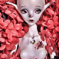 The Moon, Doll Zone Tarot Limit Doll - BJD Dolls, Accessories - Alice's Collections