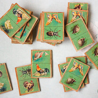 USSR Kids Dominoes / ANIMALS Vintage Wooden Picture Dominos, Educational Game for Children; Antique Illustrations: Birds, Bugs, Fish
